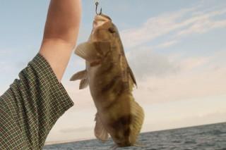 horgász hallal (hal, horgász, )