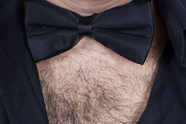 szőrös felsőtest (szőr, )