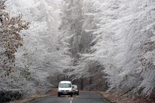 zúzmara időjárás (zúzmara, időjárás, ősz, fagy)