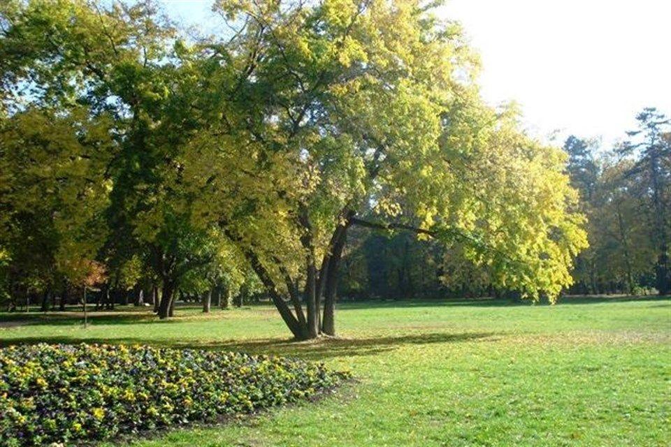 Szep-oszi-ido-Szegeden(960x640).jpg (Szép őszi idő Szegeden)