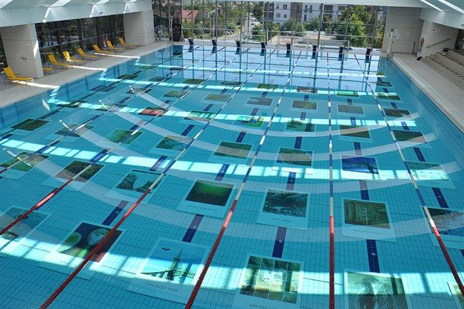 Viz-alatti-kiallitas(2)(650x433).jpg (víz alatti kiállítás, )