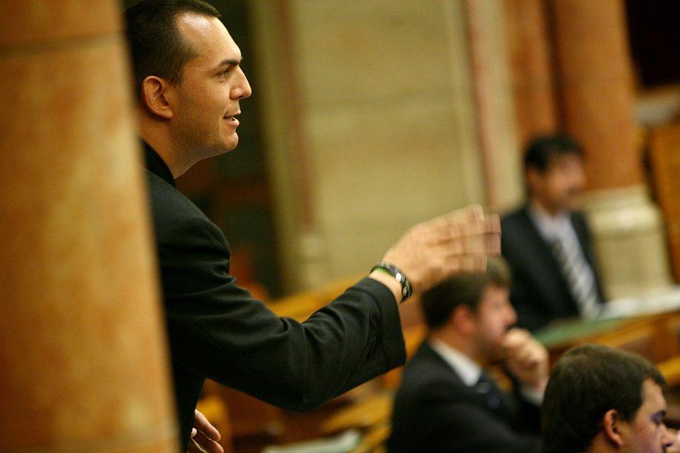 Zagyva György Gyula (Zagya György Gyula)