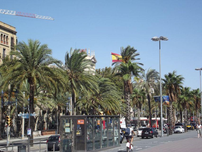 barcelona (barcelona, )