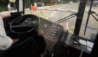 buszsofor(960x640)(1).jpg (buszsofőr)