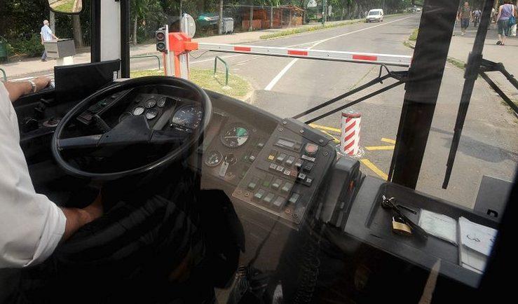 buszsofőr (buszsofőr)