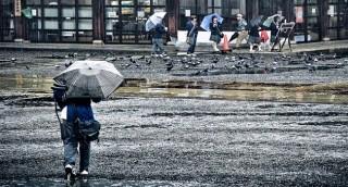eső (eső, kína, )
