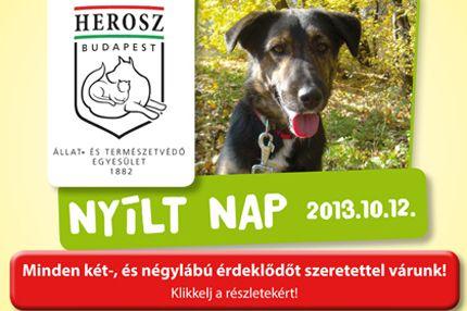herosz_cikk (hirdetés)