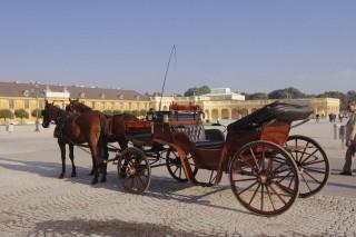 lovaskocsi (lovaskocsi, )