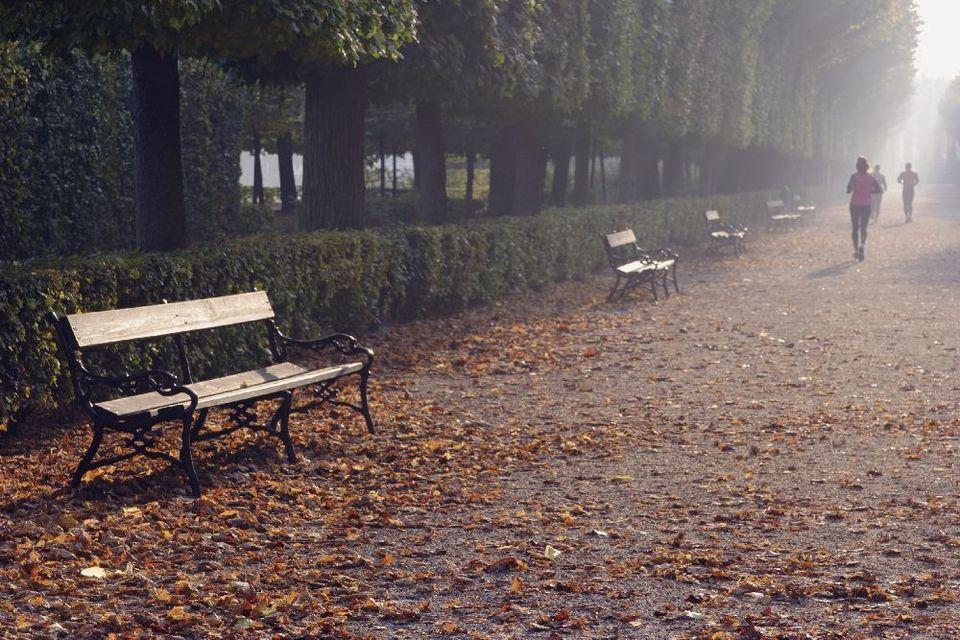 ősz (ősz)
