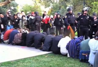 paprikaspray (rendőr, demonstráció, kalifornia, )