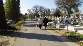 temetok (halottaknapja)