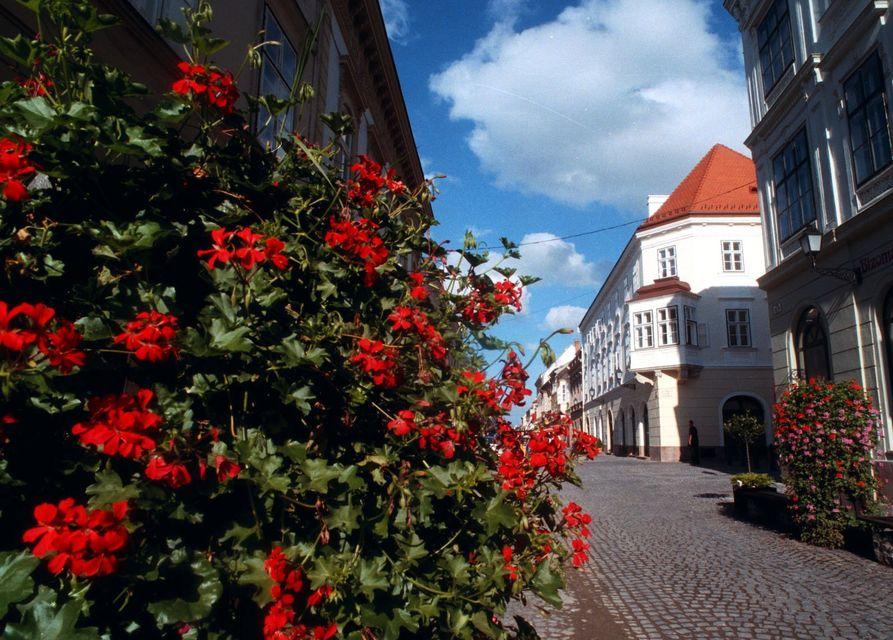 virágos magyarország (virágos magyarországért, legvirágosabb falu, zebegény, )