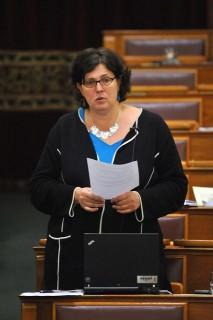 Ertsey Katalin LMP képviselő (Ertsey katalin, LMP )