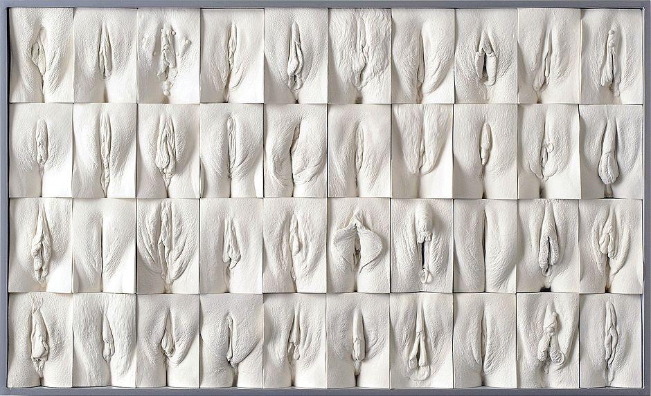 Great Wall Of Vagina Panel 1 (Array)