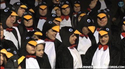 Guinness rekord - pingvinek (Guinness-rekord, pingvin, beöltözés)