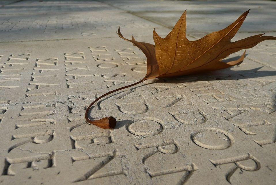 Őszi falevél (ősz, falevél, )