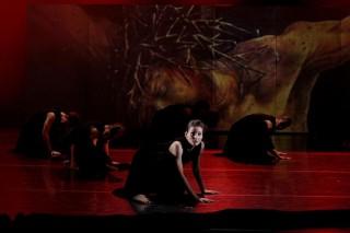 szegedi kortárs balett (szegedi kortárs balett, )