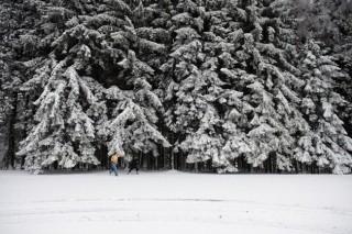 havazás galyatetőn (havazás, hó, kirándulók, )