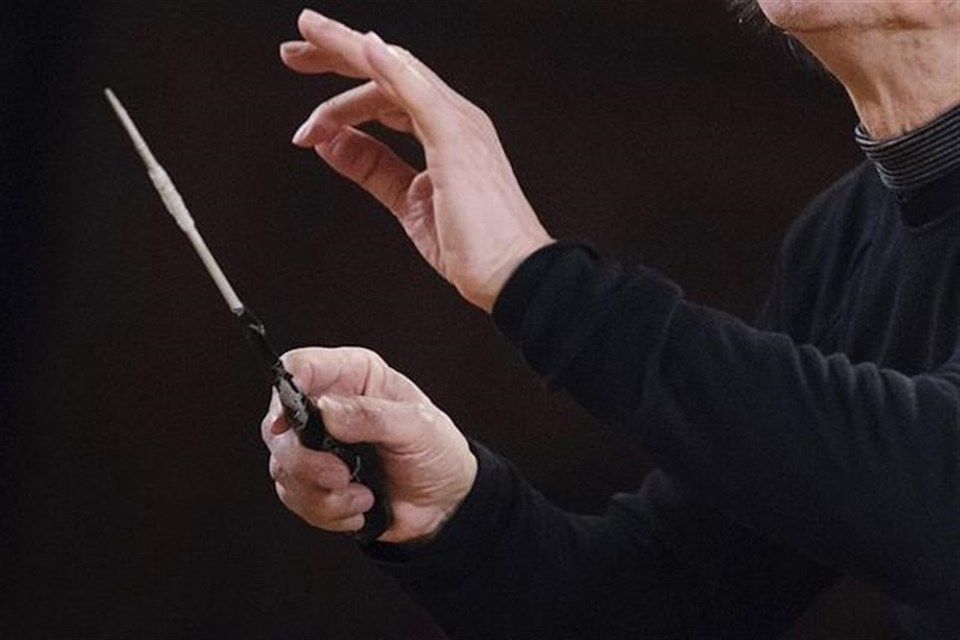 karmesteri-palca(1)(960x640).jpg (karmester, karmesteri pálca)