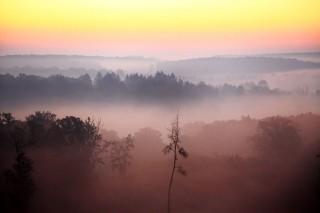 köd (ingyenes, )