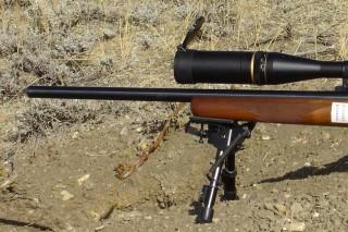 puska(960x640).jpg (vadászfegyver, puska, )