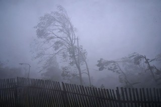 szél (szél, vihar, )