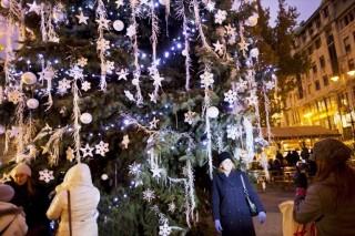 városi karácsonyfa (karácsonyfa, )