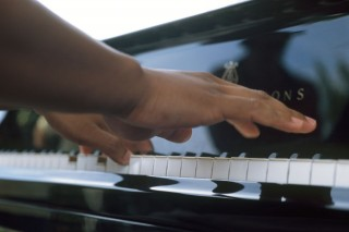 zongora (zongora, )