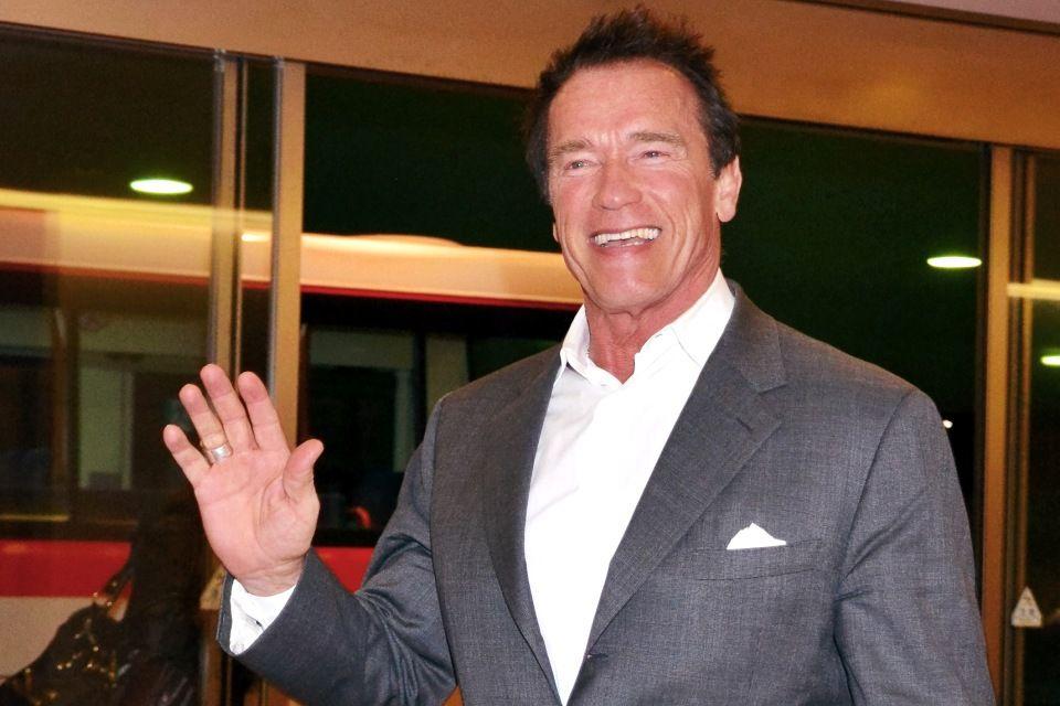 Arnold Schwarzenegger (Arnold Schwarzenegger)