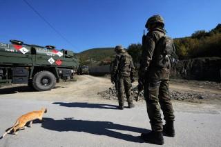 Macska koszovóban (macska, katona, koszovó)