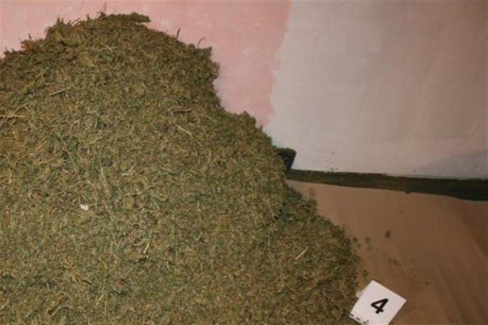Marihuana-egy-szegedi-hazban(1)(960x640).jpg (Marihuána egy szegedi házban)