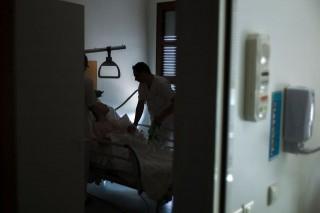 ápoló (ápoló, )