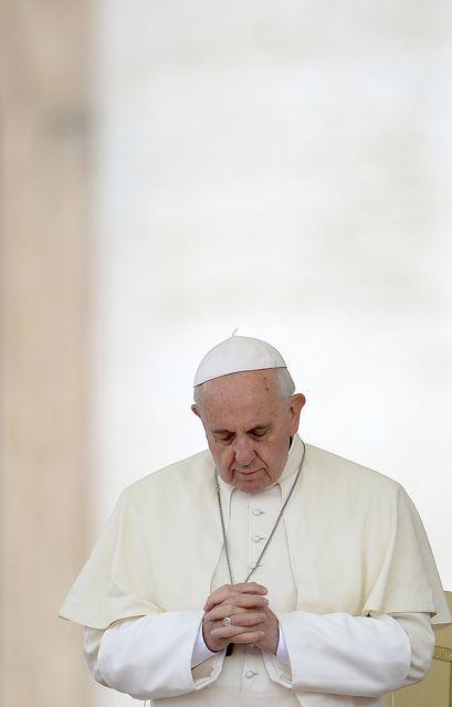 ferenc-papa(430x286)(1).jpg (ferenc pápa)