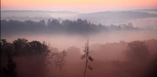 hajnali köd (ingyenes, )