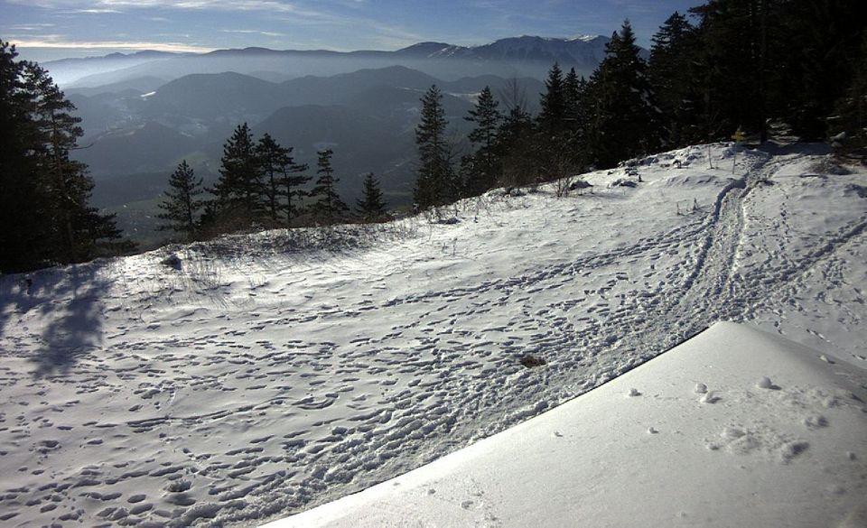 hóó (h)
