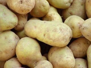 krumpli(430x286)(1).jpg (krumpli)