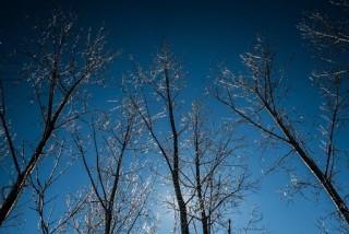 telies-idojaras(430x286)(2).jpg (időjárás, tél, napsütés, )