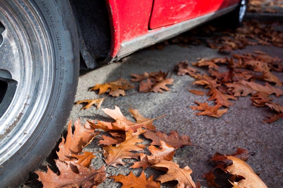 autókerék (autó, ősz, )