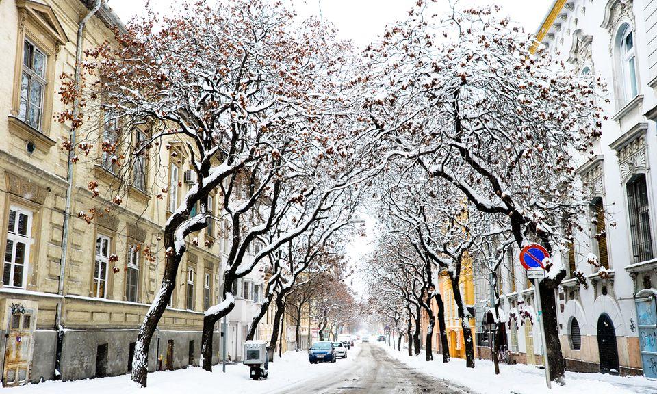 havas szeged (havas szeged)