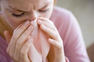 influenza(1)(960x640).jpg (influenza)