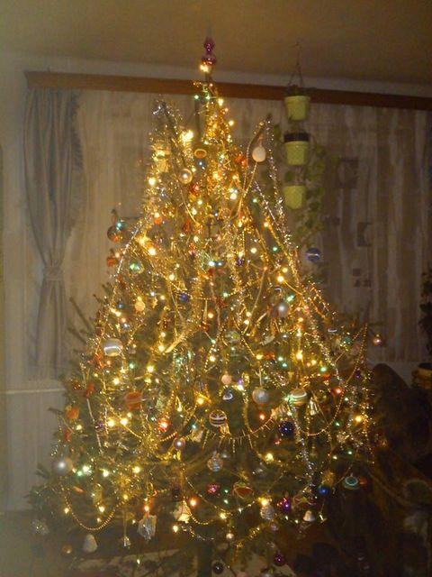 karácsonyfa (karácsonyfa)
