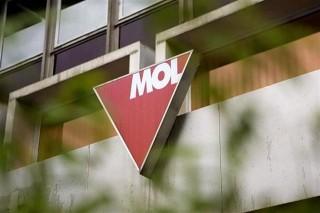 mol(1)(960x640).jpg (mol)