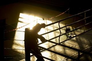 ökölvívás, boksz (Array)