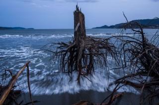 szokoar(1)(960x640)(1).jpg (szökőár, cunami, )