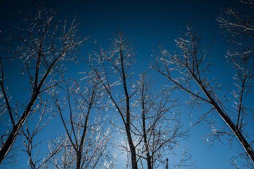 telies-idojaras(210x140)(2).jpg (időjárás, tél, napsütés, )