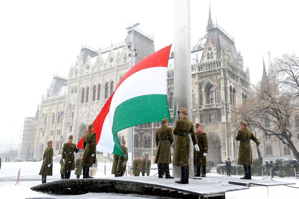 zászló (zászló)