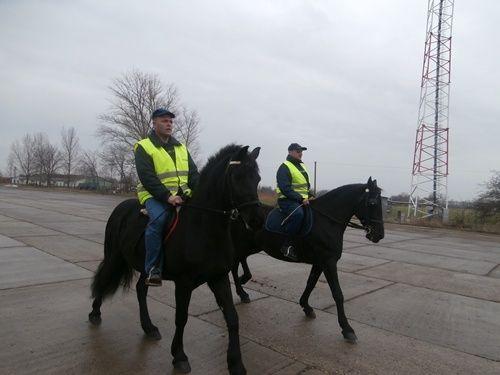 Polgárőrök lovon (ló, polgárőrség, )