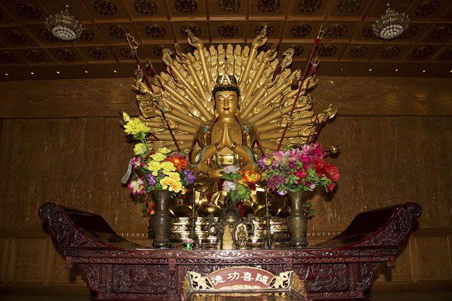 buddha (buddha, )