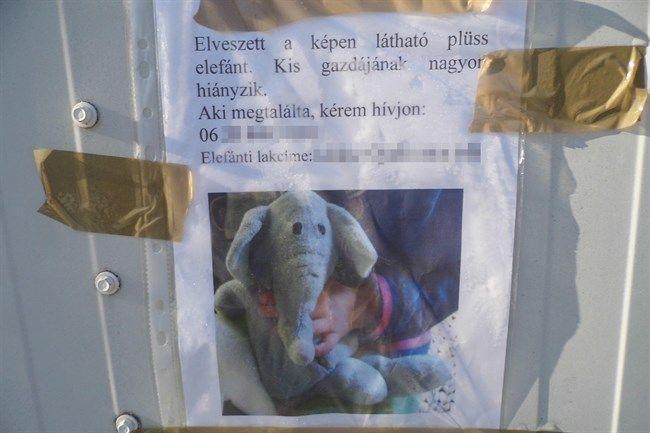 elefant(650x433).jpg (elefant)