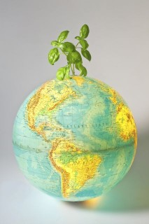 környezetvédelem (környezettudatosság, )